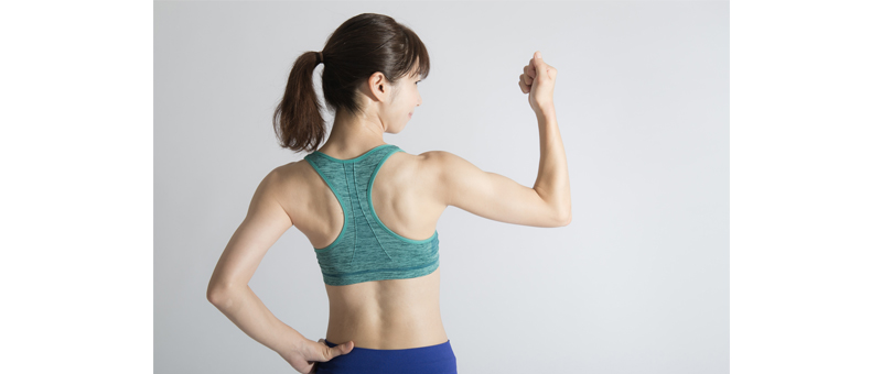 基礎代謝と筋肉量