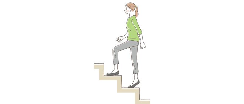 基礎代謝と運動